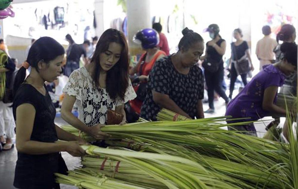 Di Banyuwangi Bisnis Janur Ilegal Bisa Didenda Rp 50 juta