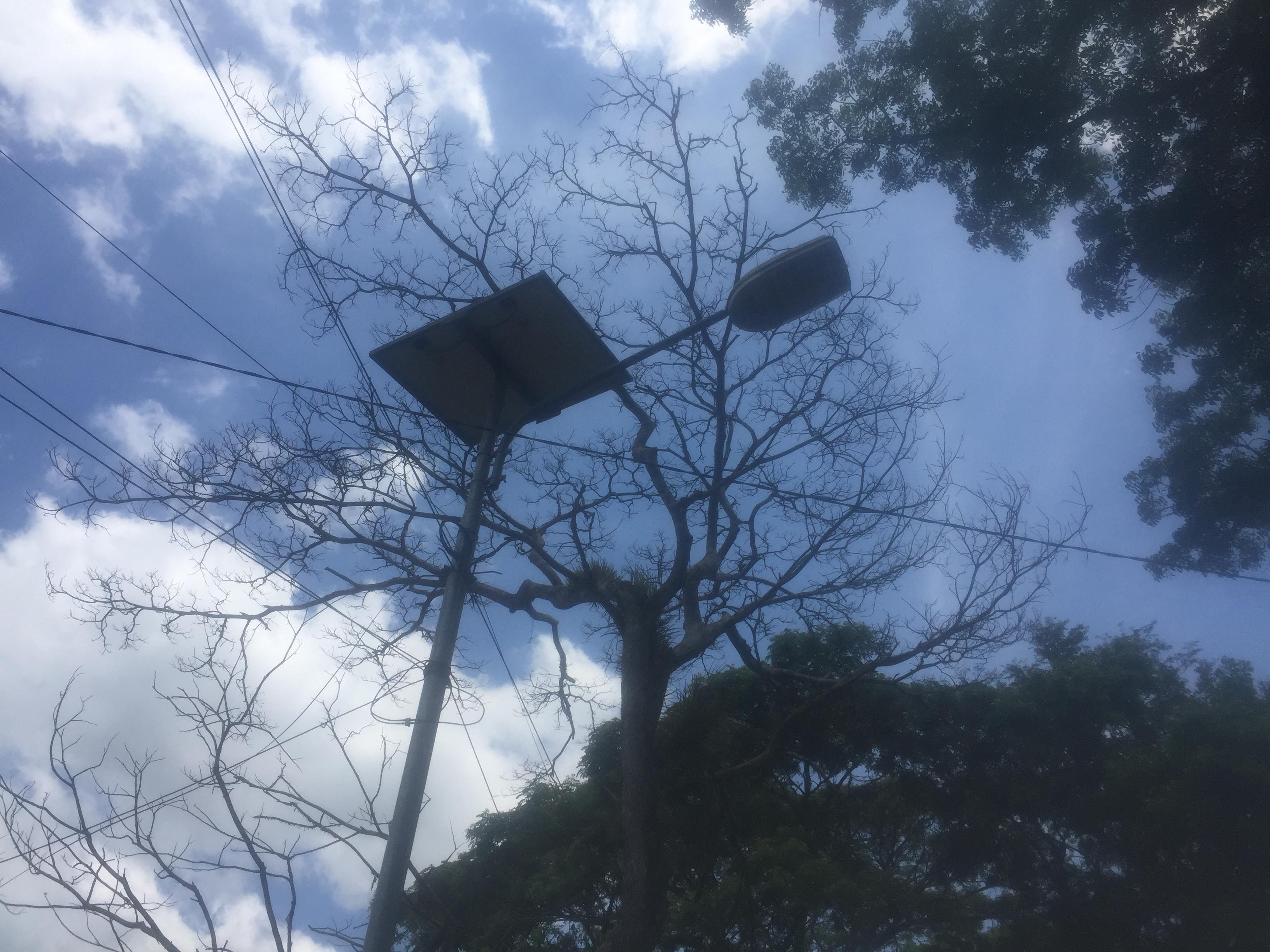 8 Solar Cell Lampu PJU Raib Di Ambil Pencuri, Di Jalan Purwoharjo Banyuwangi